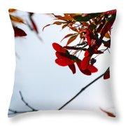 Japanese Maple 1589 Throw Pillow