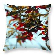 Japanese Maple 1592 Throw Pillow