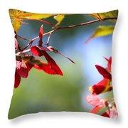 Japanese Maple 1782 Throw Pillow