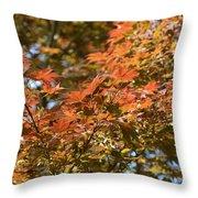 Japanese Maple Beauty Throw Pillow