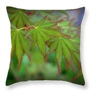 Japanese Maple Foliage Throw Pillow