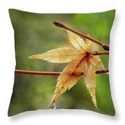 Japanese Maple In The Rain Throw Pillow