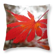 Japanese Maple Leaf 1 Throw Pillow