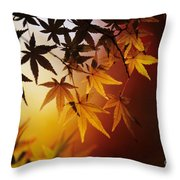 Japanese Maple Leaf Throw Pillow