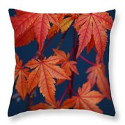 Japanese Maple Leaves In Autumn Throw Pillow