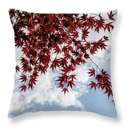 Japanese Maple Red Lace - Horizontal View Downwards Right Throw Pillow