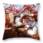 Japanese Maple Tree In Spring Throw Pillow