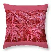 Japanese Maple Throw Pillow