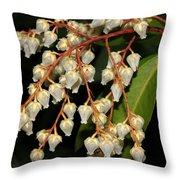 Japanese Pieris 2011-1 Throw Pillow