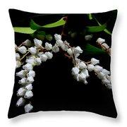 Japanese Pieris 2011-3 Throw Pillow