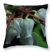 Japanese Pieris 2011-4 Throw Pillow