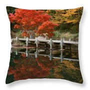 Japanese Reflection Throw Pillow