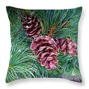 Japanese White Pine Pinecones Throw Pillow