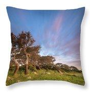 Jara's Wind Throw Pillow