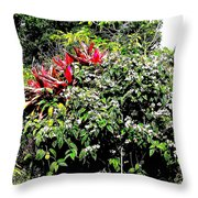 Jardinagem Throw Pillow by Eikoni Images