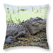 Jarvis Creek Gator Throw Pillow