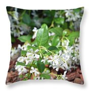 Jasmine In Bloom Throw Pillow
