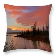 Jasper Glow Throw Pillow
