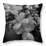 Jatropha Blossoms Wasp Painted Bw Throw Pillow