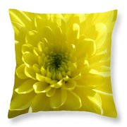 Yellow Luminosity  Throw Pillow