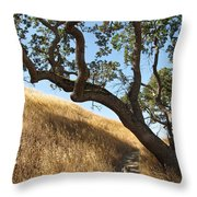 Jazz On The Steps Throw Pillow