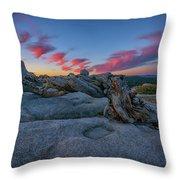 Jeffrey Pine Dawn Throw Pillow