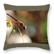 Jelks Dragon Throw Pillow