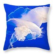 Jellies In Jellyfish Tank In Monterey Aquarium-california Throw Pillow