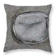 Jelly Fish On The Beach Throw Pillow