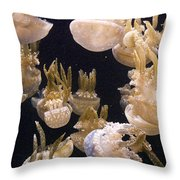Jelly Parade Throw Pillow