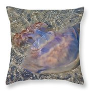 Jellyfish Throw Pillow by Betsy Knapp