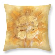 Jellyfish In The Sand Throw Pillow