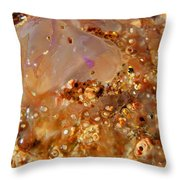Jellyfish On The Sand. Throw Pillow
