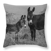 Jenny And Little Jack Throw Pillow