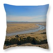 Jenny Brown's Point. Throw Pillow