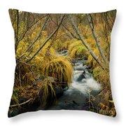 Jenny Creek In Autumn Throw Pillow