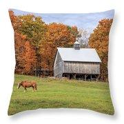 Jericho Hill Vermont Horse Barn Fall Foliage Throw Pillow