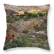 Jerome's Douglas Mansion Throw Pillow