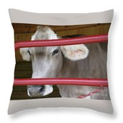 Jersey Calf Throw Pillow