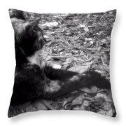 Jesk Throw Pillow