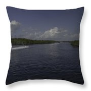 Jet Through The Mangroves Throw Pillow