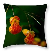 Jewel 2 Throw Pillow