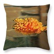 Jewel Drops - Orange Chrysanthemum Bloom Floating In A Fountain Throw Pillow