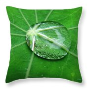 Jewel Of The Nile Throw Pillow