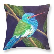 Jewel Of The Skies Throw Pillow