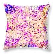 Jewels In The Sky Throw Pillow