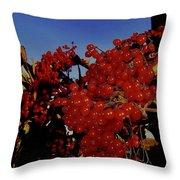 Jewels Of Autumn 4 Throw Pillow