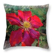 Clemantis Blossom Throw Pillow