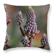 Jilted In June Throw Pillow