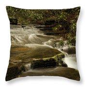 Joe's Creek Throw Pillow
